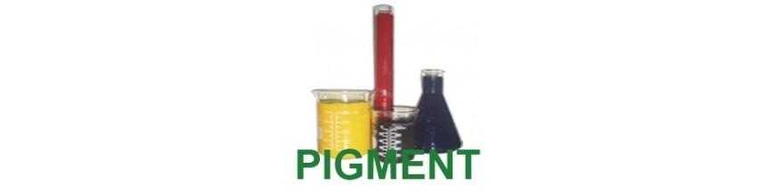 Pigment Ink