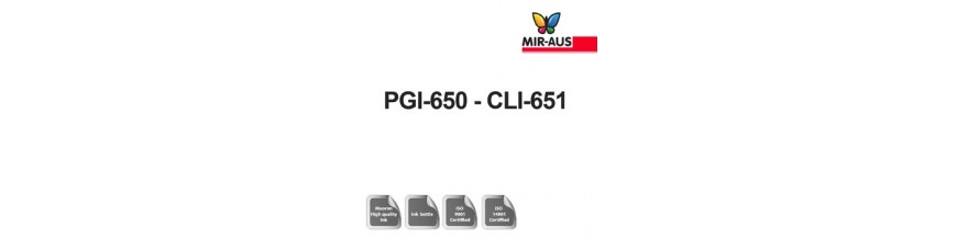 رمز خرطوشة 250 مل الحبر القابلة لإعادة الملء: CLI PGI-650-651